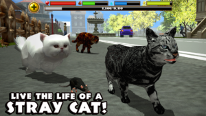 Stray Cat Simulator android game