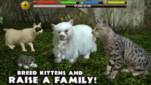 Stray Cat Simulator android free