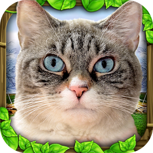 Stray Cat Simulator apk free