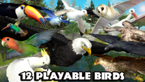Ultimate Bird Simulator android free