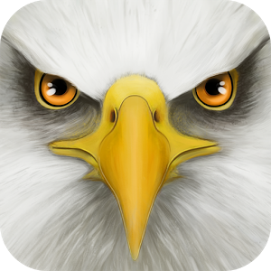 Ultimate Bird Simulator APK Free
