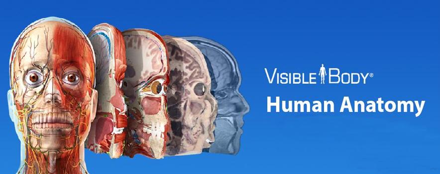 Human Anatomy Atlas 2019 apk